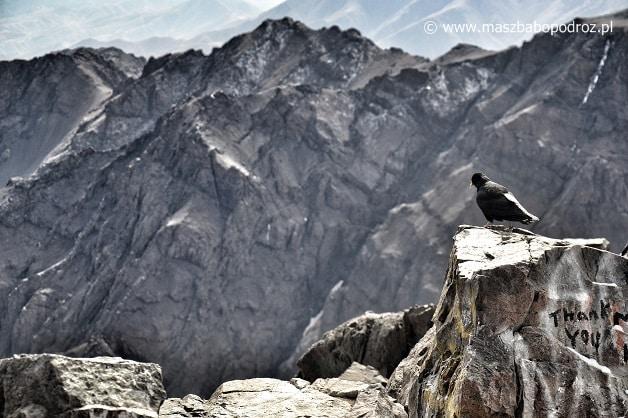 Jebel Toubkal. Na szczycie.