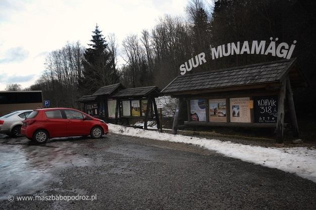 Suur Munamägi.