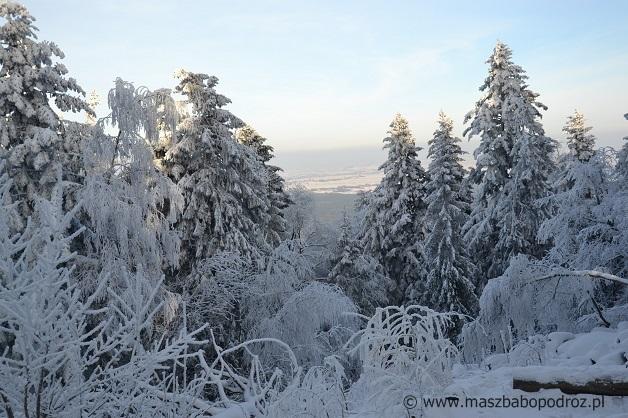 Najwyższy szczyt Gór Świętokrzyskich.