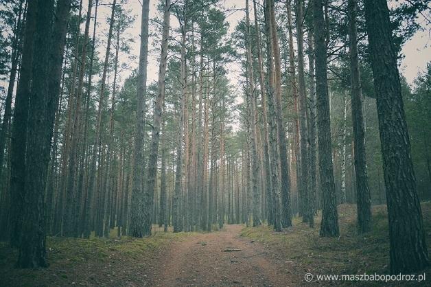Auksztocki Park Narodowy, Litwa.