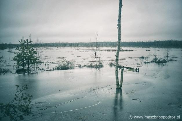 Viru Raba, Park Narodowy Lahemaa.