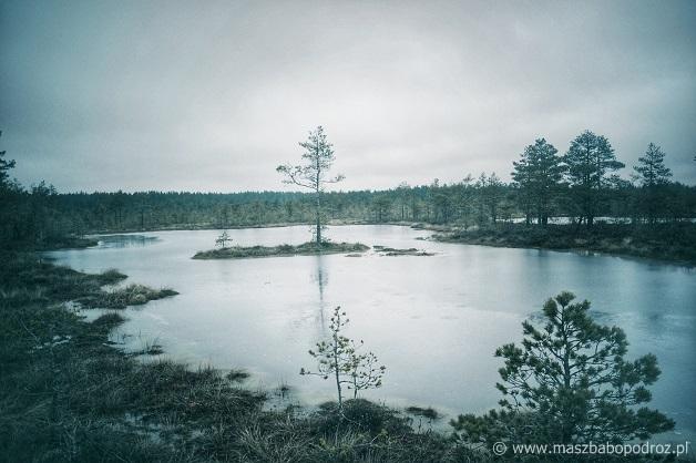 Lahemaa Rahvuspark.